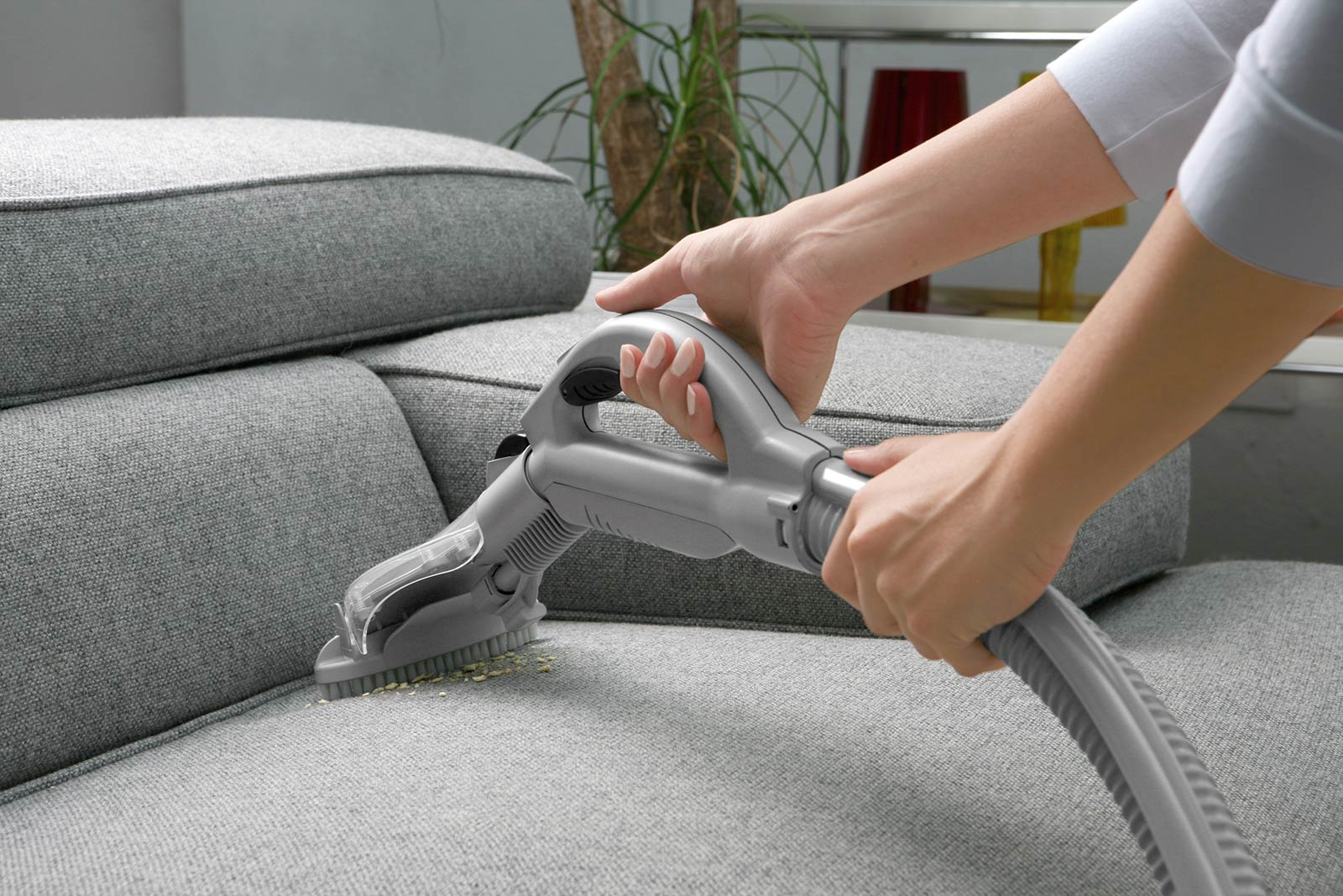 Sofa Cleaning: Tips & Products to Clean Your Sofa | EarlyExperts