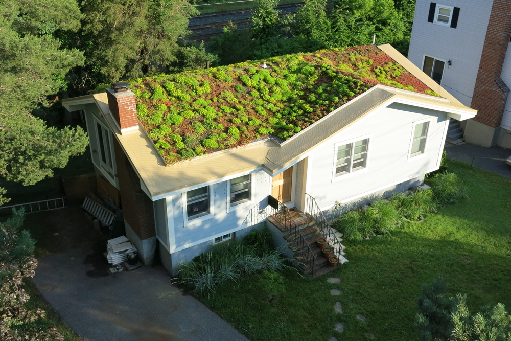 Green Roofing A House Advantages And Costs Earlyexperts