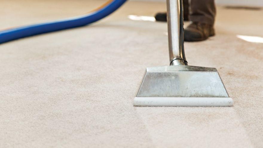 carpet dye products